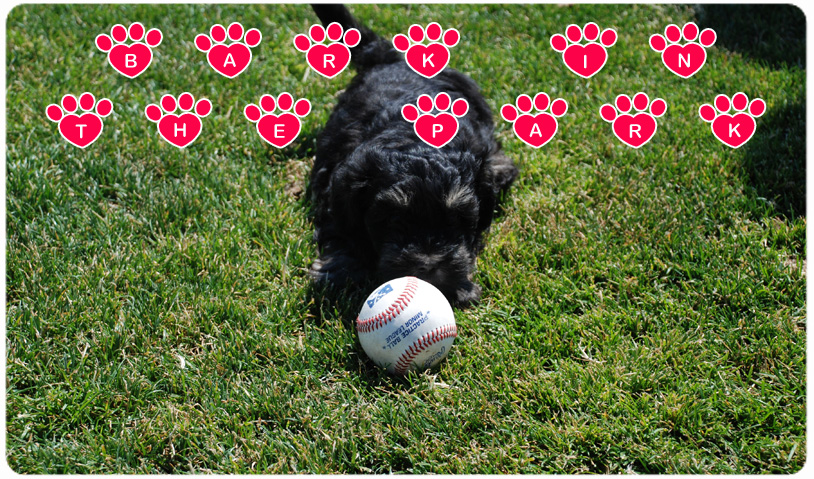 BARK IN THE PARK -- AUGUST 22nd