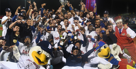 The 2019 NYPL Champions - The BKLYN Cyclones