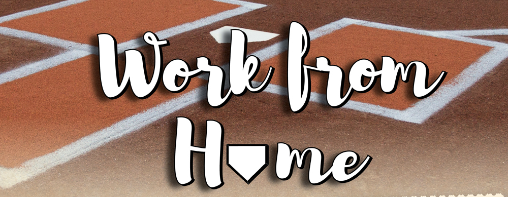 WORK FROM HOME!  CORPORATE OUTINGS AT MCU PARK